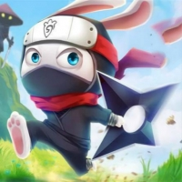 Ninja Rabbit Play