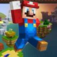 Minecraft Super Mario Edition Play