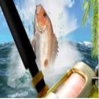 Sea Fishing Tropical