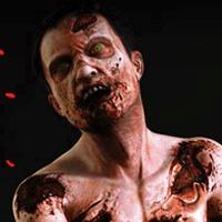Zombie Invasion Play